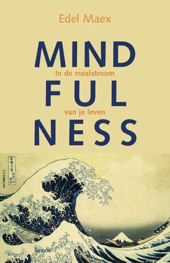 Boek Edel Maex, Mindfulness in de maalstroom van je leven